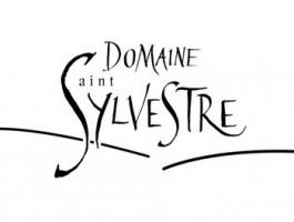 Image de Saint Sylvestre