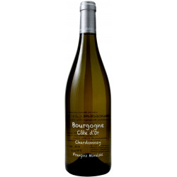Bourgogne Côte d'Or blanc 2019