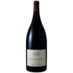 Chambolle-Musigny 2019 Magnum